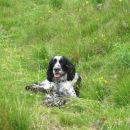 ležanje v travi... :)