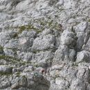 Pogled na 60m visoko Pipanovo lestev