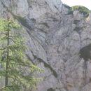 Grapa izpod Staničevega vrha ter poraščeno sedlo pred Staničevim vrhom