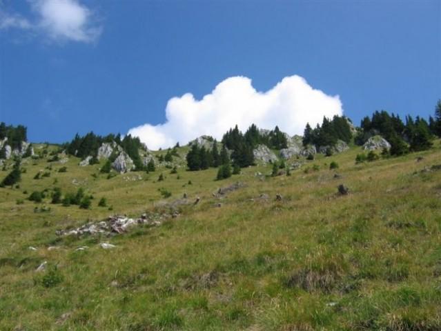 Južno pobočje Begunjščice