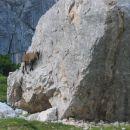 Ura alpinistične šole za malega kozoroga ;-)