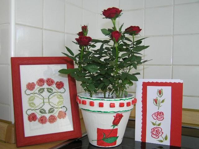 Serija vrtnic za 80.  rojstni dan none iz Dolenjske.