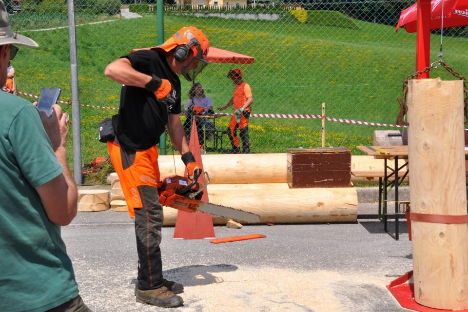 Gozdarsko tekmovanje  - foto povečava