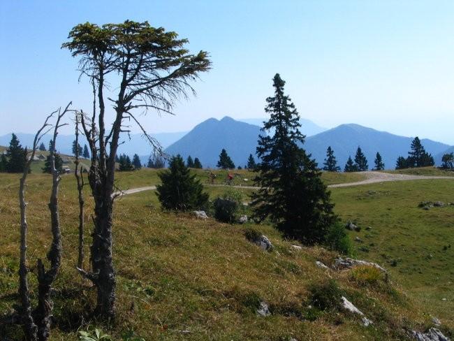 Velika Planina 2006 - foto povečava