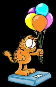 Garfield - foto