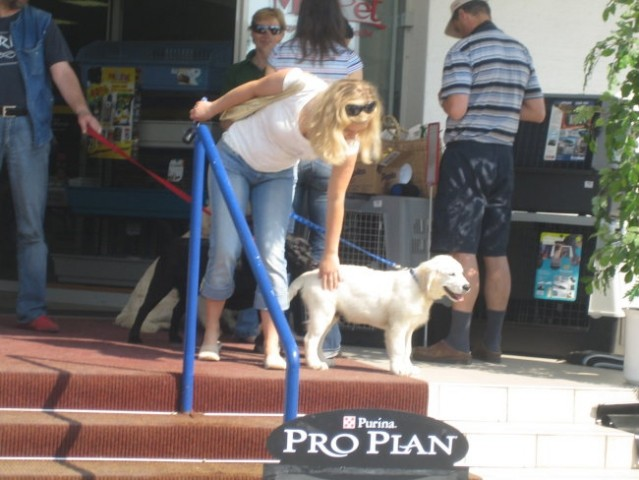 12.5. 2006 Mr. Pet