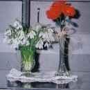 rože iz najlona in pravi zvončki