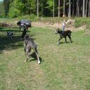 Piknik 28.4.2007