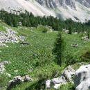 Sestop nazaj v dolino Trig. jezer