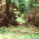 Lepši del grebena proti Hajnriharjevem sedlu