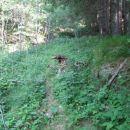 Zadnji metri ob potoku vse do ceste.