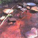 kk se vidi, kolk železa vsebuje voda =)