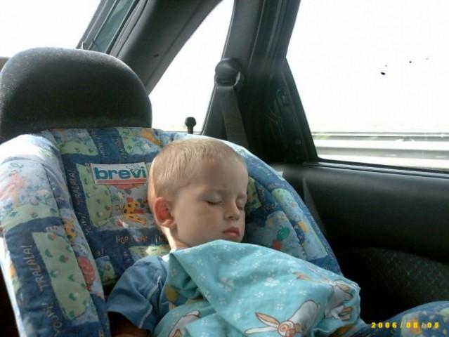 Pot nazaj, mali spi brez dude...