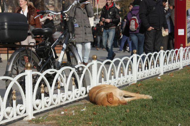Istanbul - foto