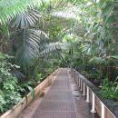 Kew Gardens - Palm House