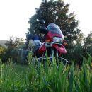 Bemfi kuka iz trave