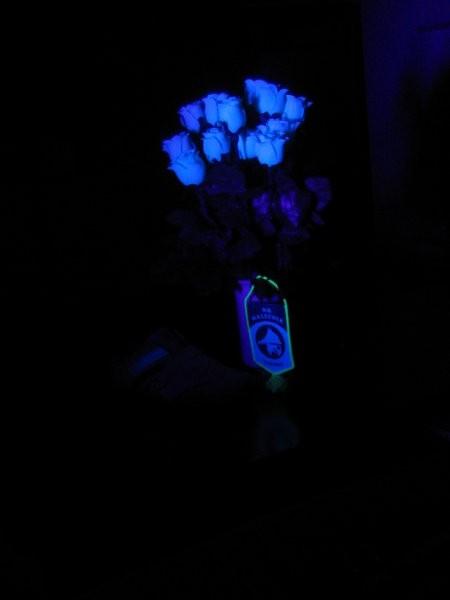 Bele in fluorescentne stvari pod UV svetlobo zelo izstopajo (v realnosti precej bolj kot j