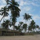 ja ja, takšne obale si predstavljaš, kadar imaš v mislih neke sanjske tropske otoke :D