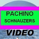http://www.youtube.com/watch?v=i0wlIXf1jgw