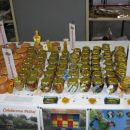 čebelarstvo - stojnica na smučarskem sejmu v