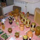 čebelarstvo - obisk šolarjev na domu