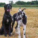 Lara in Aba