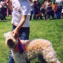 Urška in Envy, CAC Hrušica 2004