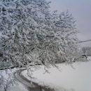 Sneg. 24.3.2008