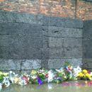 Auschwitz - zid smrti