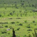pogled na okoliško ravnico