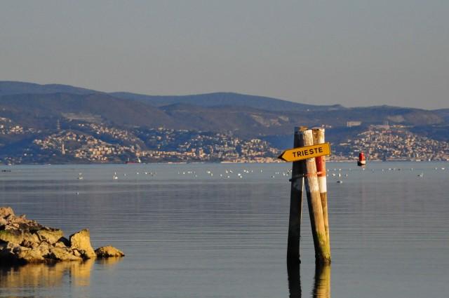 Delta Soče - foto