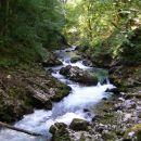 Voda doli teče
