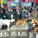3 mesto za najlepšega mladiča razstave v Lj, GR 2005