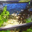 Moj prvi Akvarij