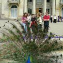 Łazienki Królewskie 2007