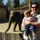 Pazi očka,slon gre