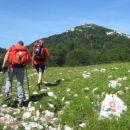 Izlaz iz šume i pokret prema Gorničkom.