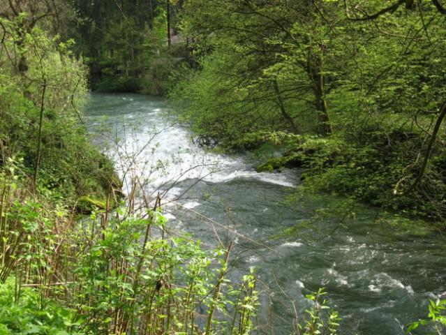 Izviri Ljubljanice (25. 4. 2008) - foto