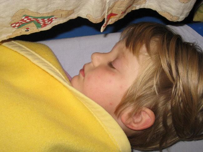 Pančkamo (2. 10. 2008) - foto povečava