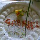Moja prva torta