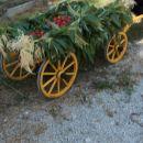bernski voziček z jagodami