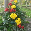 vsako steblo rastline poševno podrežemo in zataknemo v gobo