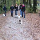 Skupinski sprehod...