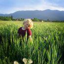 Timi pozira na pšeničnem polju za hišo