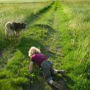 Naša dva psa :))) Ena je Šarka, drugi pa je kuža Piki :))