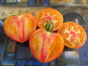 tomatojunkie
